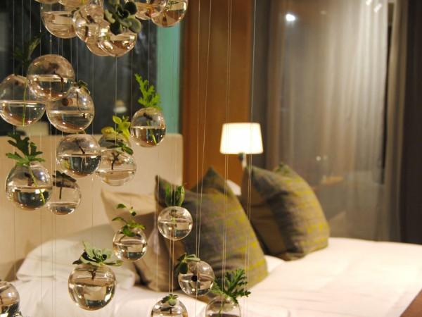 bolas de cristal con plantas en el interior.